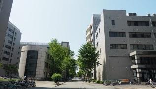 ・入試案内(徳島大学のページ)